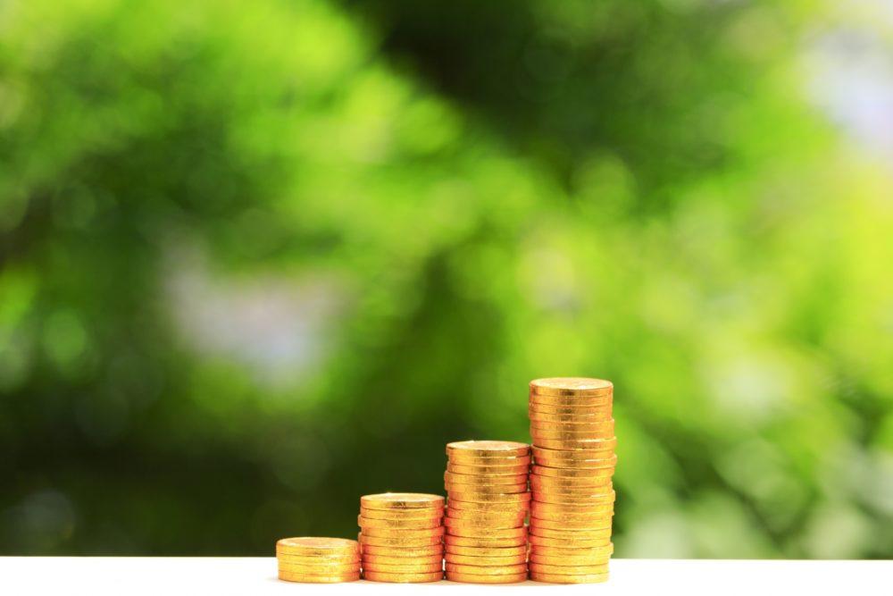 ウェルスナビで運用中の資産評価額を定期的に報告しています